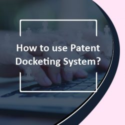 How to Use Patent Docketing System?